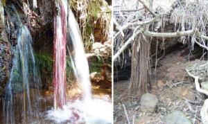 Nascente localizada na parte oeste do Sinclinal Moeda. Em 2013 havia fluxo intenso de água e em 2017, completamente sem água. Fotos: Instituto Prístino.