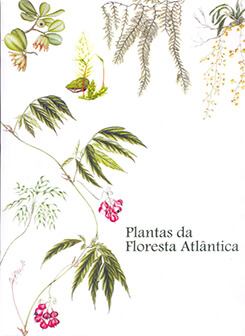 Imagem Plantas da Floresta Atlântica